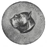 Предок французского бульдога бургосская бойцовская собака