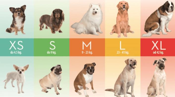Размеры фурминаторов для собак
