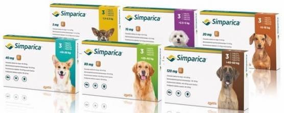 Симпарика: аналог Бравекто для собак