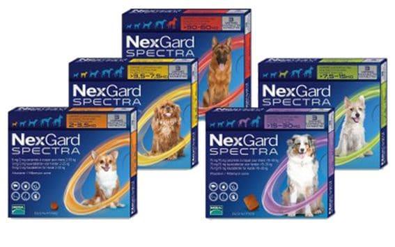 5 видов таблеток Нексгард Спектра в упаковке