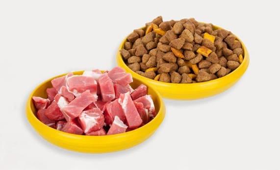 Чем кормить собак грюнендаль