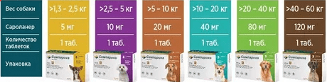 Дозировка препарата Симпарика для собак