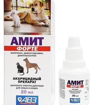 Акарицидный раствор Амит Форте для обработки собак от демодекоза