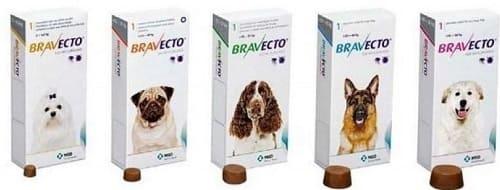Таблетки Бравекто для лечения запущенного демодекоза собак