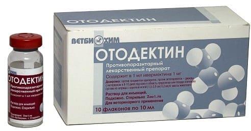 Отодектин: уколы для лечения запущенного отодектоза