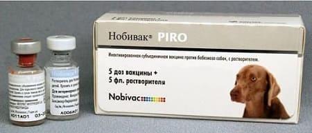 Вакцина Нобивак пиро от пироплазмоза