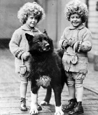 Балто с детьми в зоопарке Кливленда