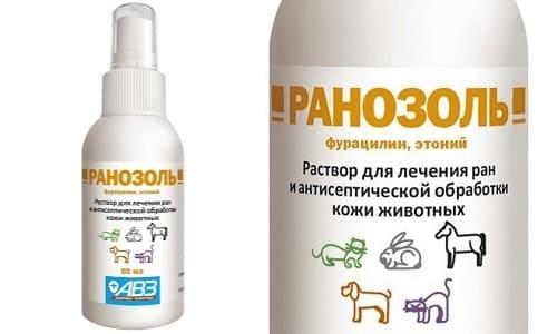 Ранозоль: антисептик для домашних животных