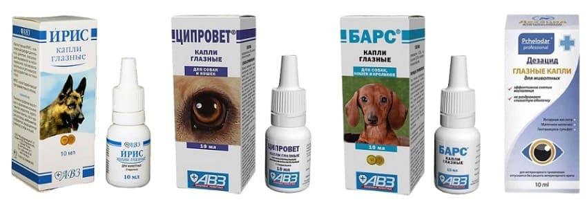 Аналоги глазных капель Декта-2 для собак